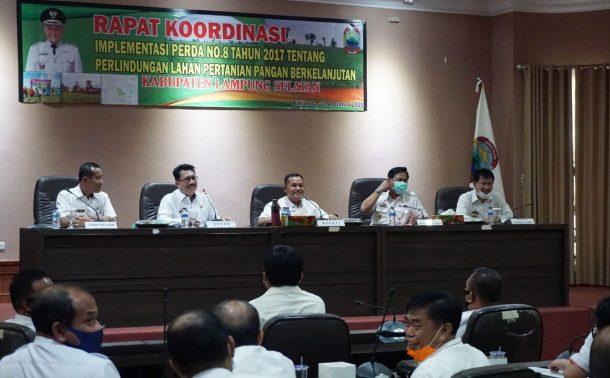 HUT Kemerdekaan RI, Pemkab Lampung Selatan Gelar Lomba Mural Kebun Edukasi