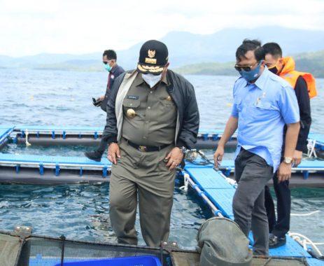 Gubernur Arinal Dorong Lobster Jadi Unggulan Sektor Perikanan dan Dukung Pariwisata Lampung