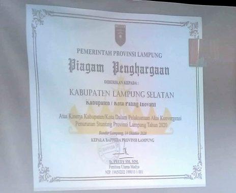 Kabupaten Lampung Selatan Raih Penghargaan Dalam Penanganan Stunting
