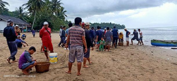 Nelayan di Teluk Semangka Tanggamus Susah Dapat Ikan, Harga Jual Meningkat 100 Persen