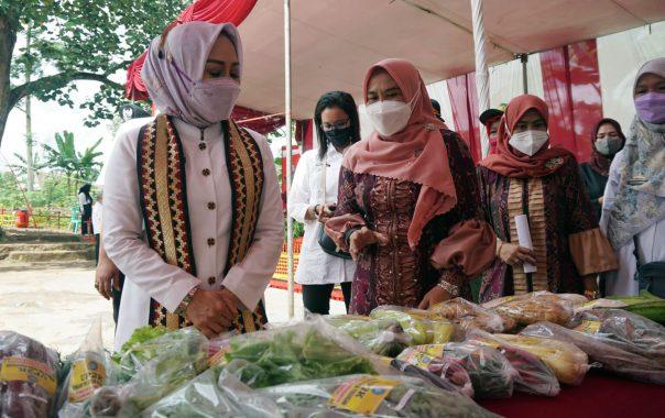 Lomba Desa Tingkat Provinsi Lampung, Program Bugisa Jadi Unggulan Desa Pasuruan Lampung Selatan