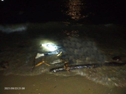 Warga Temukan Mayat Tanpa Identitas di Pantai Pekon Guring Tanggamus